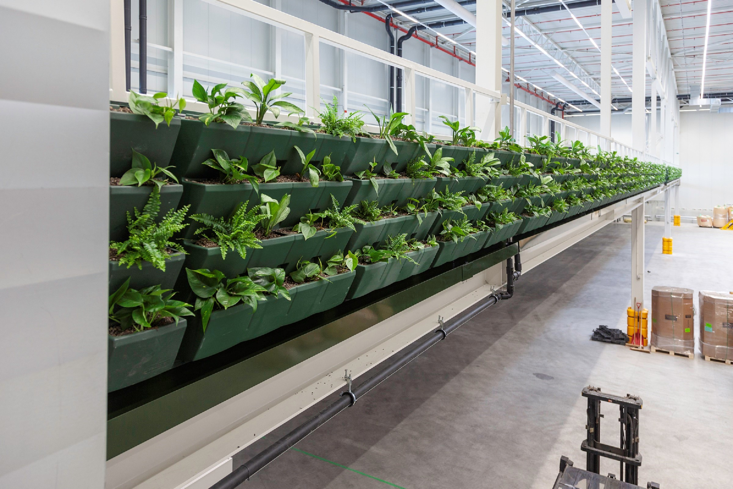 Prologis feature WELL Building Standard plants